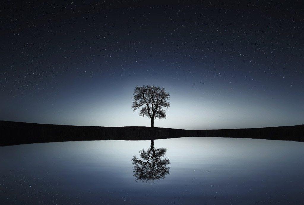 Meditation - Gelassenheit