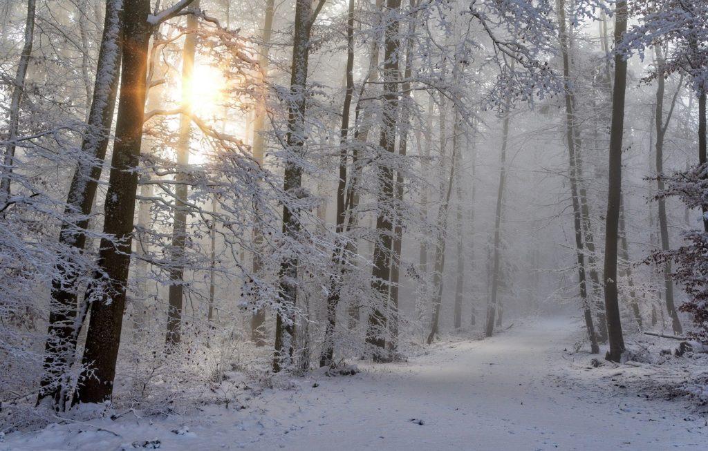 Winterdepression - Meditation